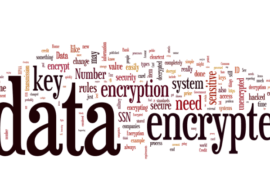 One in Three Companies Lacks Policies for Information Security