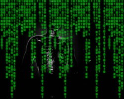 malware3-250x200.jpg