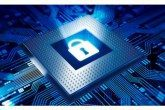 Next Generation Network Monitoring & Security Applications